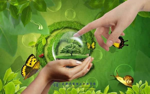 """""""环保""""文化,用鼓掌的双手做环保,保护自己"""